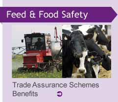 Trade Assurance Schemes Benefits