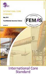 FEMAS International Core Standard
